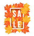 autumn leaves with sale label vector image