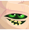scary cartoon monster mummy face vector image