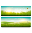Two beautiful summer meadow landscape banners with vector image