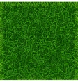 Green Grass Field Banner Football Place Background vector image