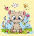 cute cartoon kitten vector image