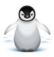 baby emperor penguin vector image