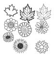 doodles of flower and leaf vector image