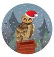 Cute Christmas Owl vector image