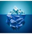 Snow iceberg mountain in polygonal style vector image