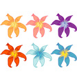 Flowers of different colours vector image vector image