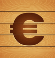 euro on wooden background vector image vector image