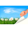 Nature background with green grass daisies and vector image vector image