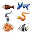 Cute fish collection set isolated on white backgro vector image