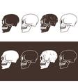 set of aggressive skulls design template vector image
