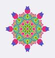 round ornament bright colors Mandala Ethnic decora vector image