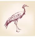 Japanese crane hand drawn llustration realistic vector image