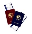 passports vector image vector image