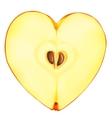 apple heart vector image