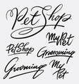 My pet and grooming hand written typography vector image