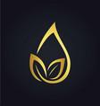 organic leaf droplet gold logo vector image