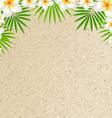 Sand Background With Frangipani vector image