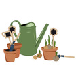 planting bulbs in pots vector image