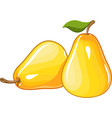 Juicy ripe pear vector image
