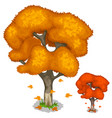 autumn maple tree with falling leaves isolated vector image