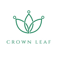 concept icon crown in the leaf vector image