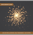 golden glowing lights effects isolated on vector image