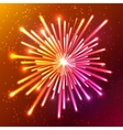 Bright neon firework vector image