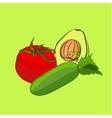 set of sketch vegetables vector image