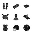 ball helmet bat uniform and other baseball vector image