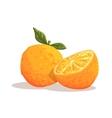 Fresh Full Garden Orange WIth Leaf And Orange vector image