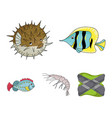 shrimp fish hedgehog and other speciessea