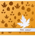 Autumn background with beautiful leaves vector image