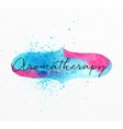 Beauty natural spa aromatherapy vector image