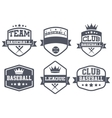 Set of Vintage Baseball Club Badge and Label vector image