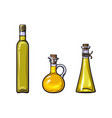 sketch olive oil logo icon set isolated vector image