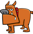 bull dog cartoon vector image