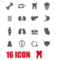 grey anatomy icon set vector image