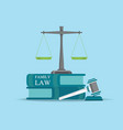 family law books with a judges gavel in flat style vector image