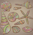 set of decorative seashells vector image