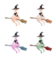 Set of multi-colored witch on a white background vector image