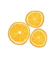 Half Of Orange Fruit And Orange Slice Next To It vector image