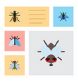 flat icon buzz set of fly mosquito dung and vector image
