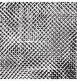Texture Cloth Grid vector image vector image