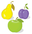 Autumn collection of ripe fruit vector image