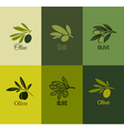 Olive branch Set of labels vector image