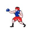 Amateur Boxer Boxing Cartoon vector image vector image