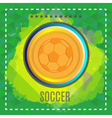 Digital football and soccer ball vector image