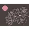 sakura flowers vector image vector image