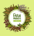 cereal vegetable and bean farm product poster vector image