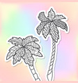 adult coloring doodle palm trees vector image